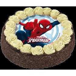 Gâteau chocolat Spiderman - anniversaire enfant - Pâtisserie La Romainville